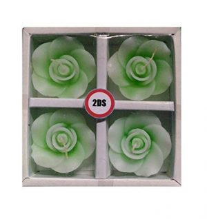 2ds Green rose