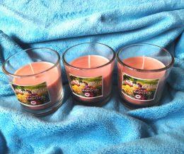 Mixed Fruit candles