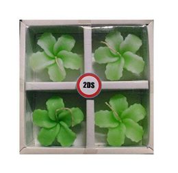 2ds orchid floating candles Green