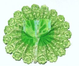 Gopal Poshak Chikan Green